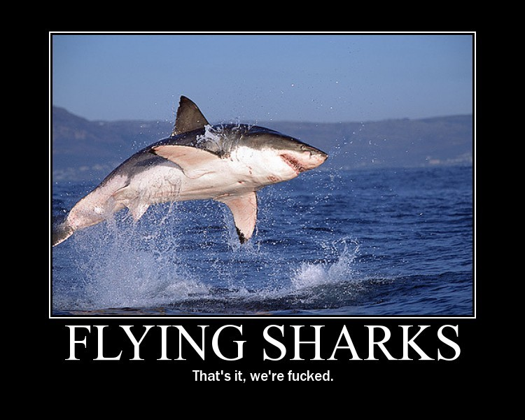 flyingsharks